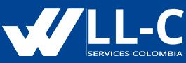 LLC Services